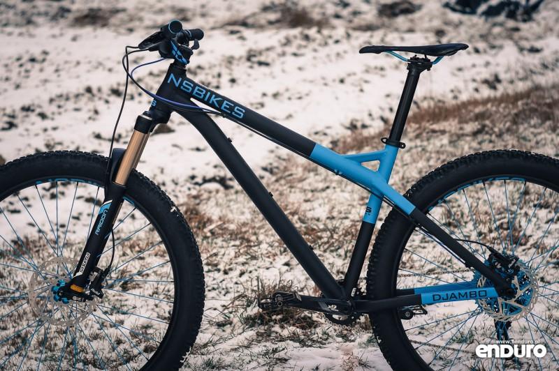 NS Bikes Eccentric Djambo - 11