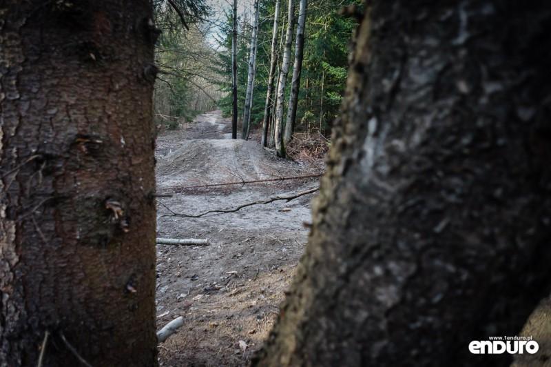 Suliwoods - trasy rowerowe Ślęża - stolik
