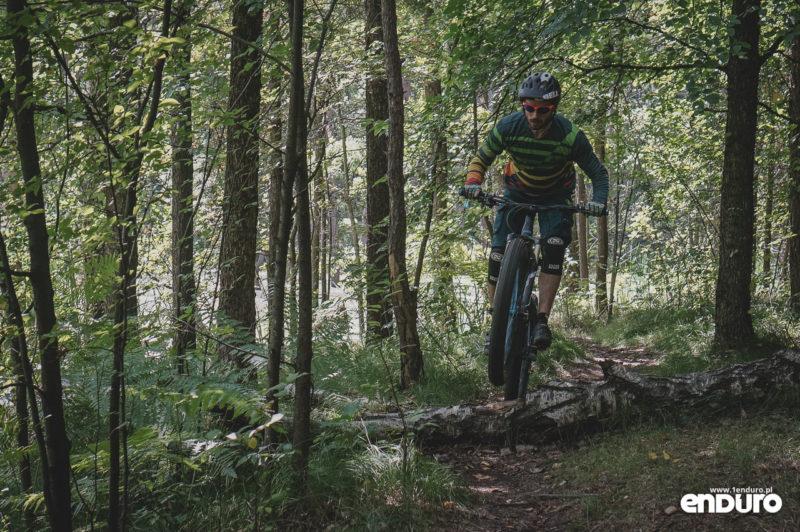 NS Bikes Eccentric Djambo - skok przez drzewo