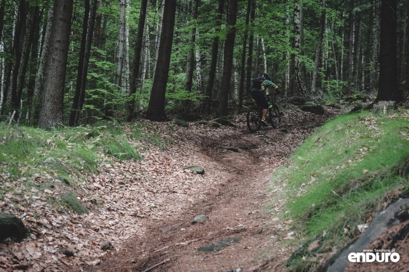 Trutnov Trails - podjazd Pansky Stoupak