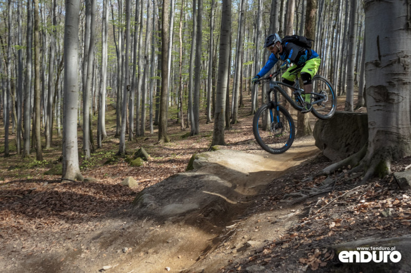 Test Canyon Strive Al 6.0 Race