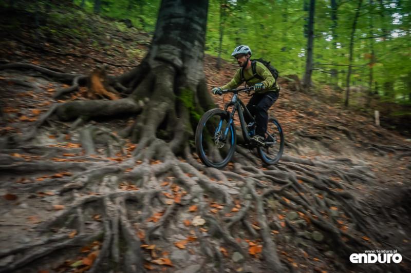 Ścieżki Enduro Trails Bielsko - korzenie Stary Zielony