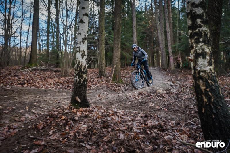Suliwoods - trasy rowerowe Ślęża - bandy