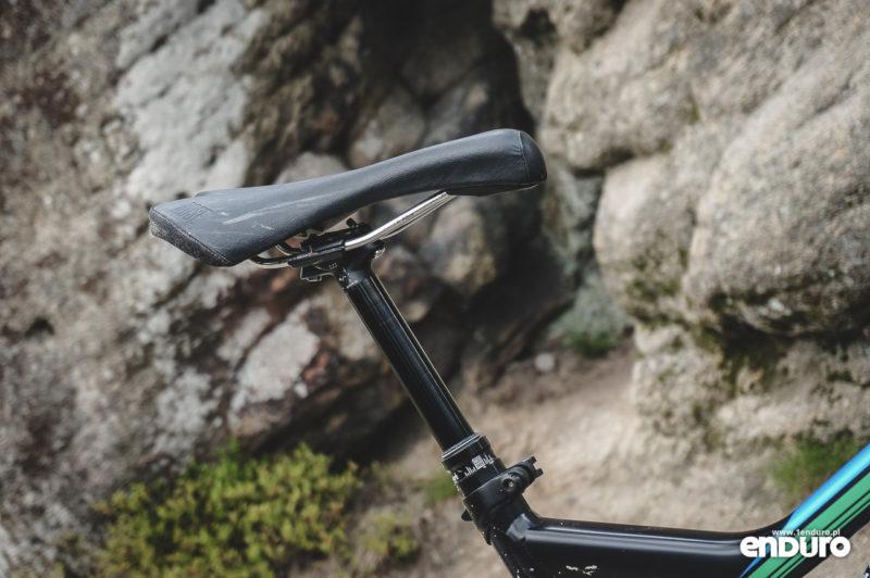 Rose Uncle Jimbo test - Light saddle