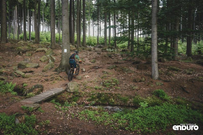 Trutnov Trails - czerwona trasa końcówka