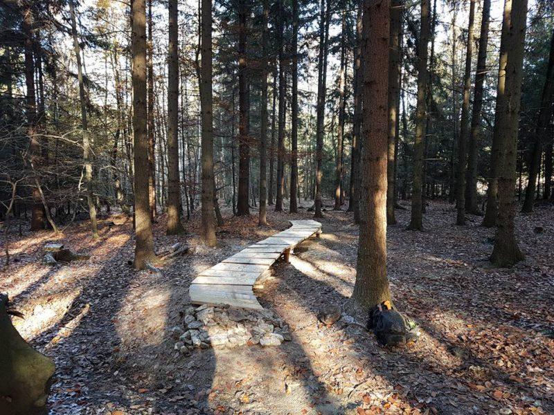 Polskie singletracki 2017-2018: Suliwoods