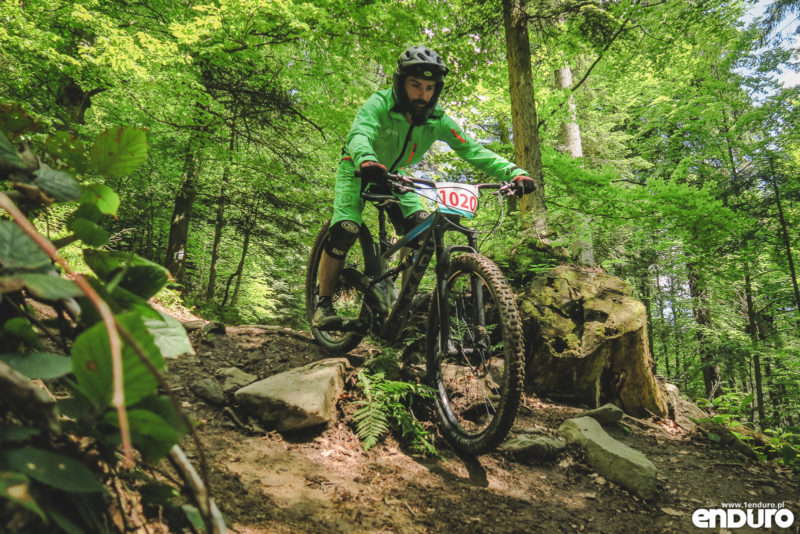 Marin Wolf Ridge 8 2018 - test recenzja