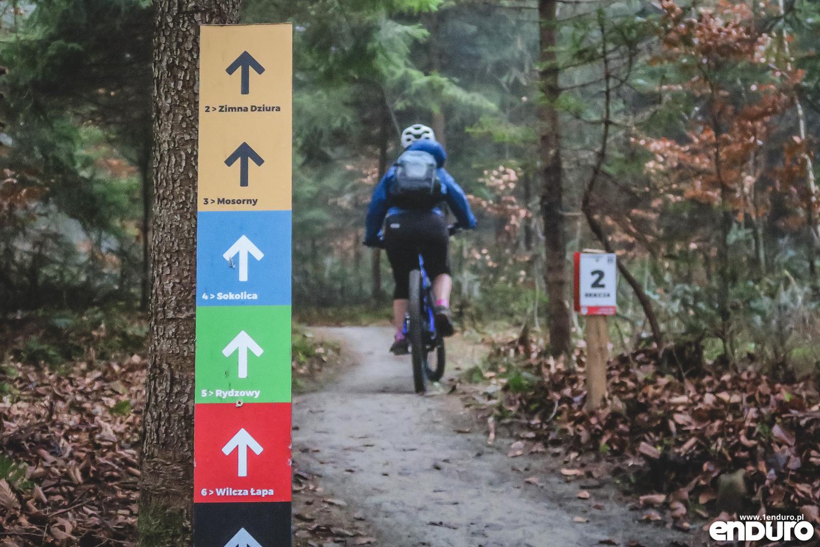 [Obrazek: babia-gora-trails-zawoja-40.jpg]