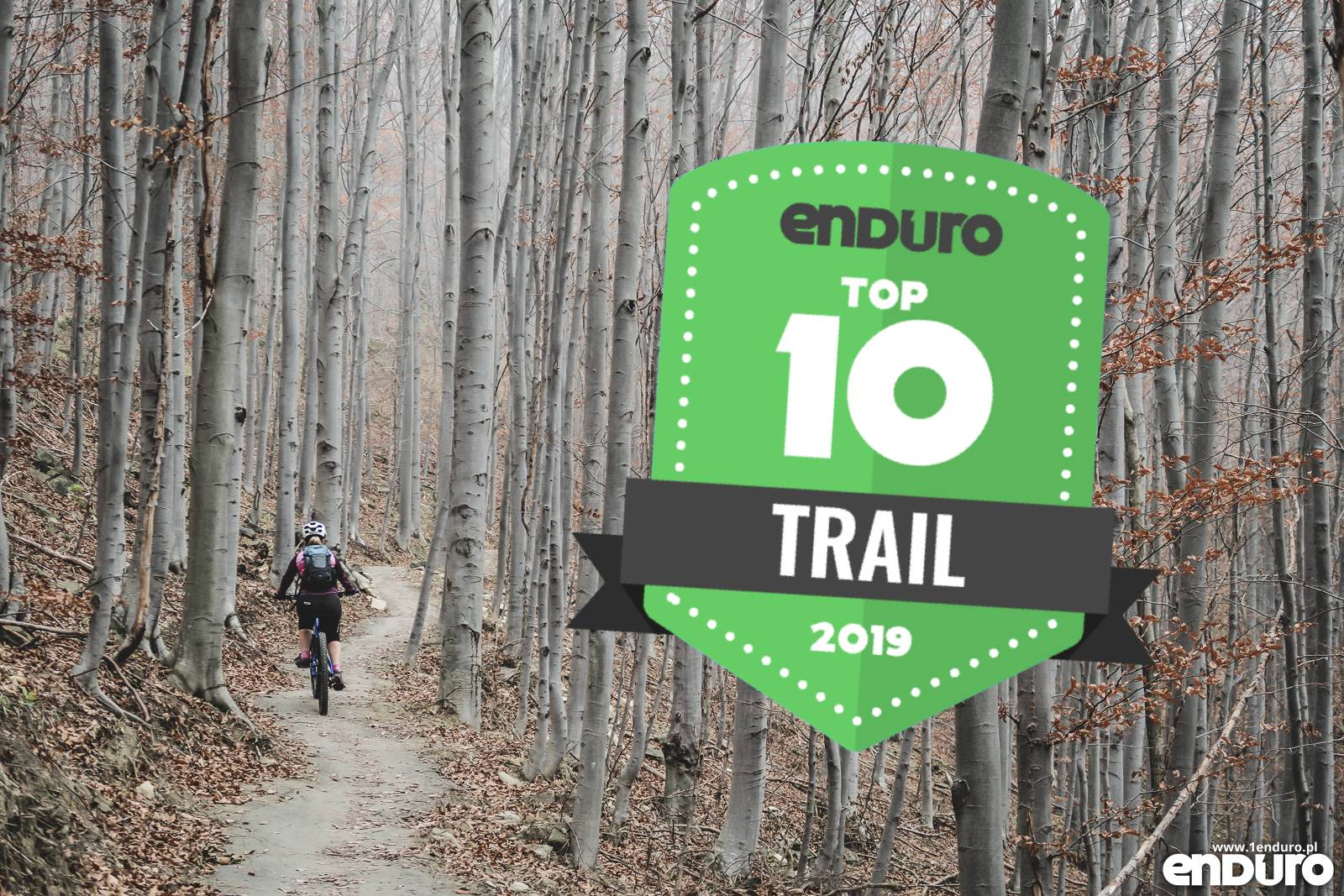 [Obrazek: rowery-trail-15000-zl.jpg]