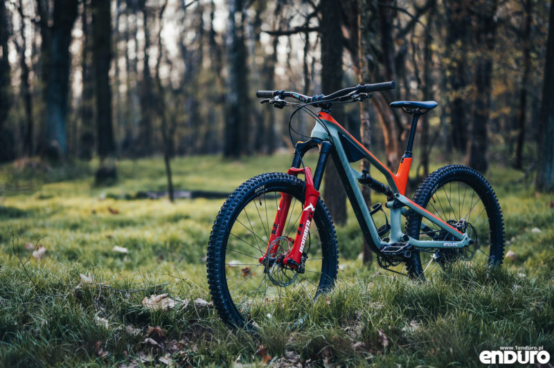 Canyon Spectral 1Enduro custom 2019