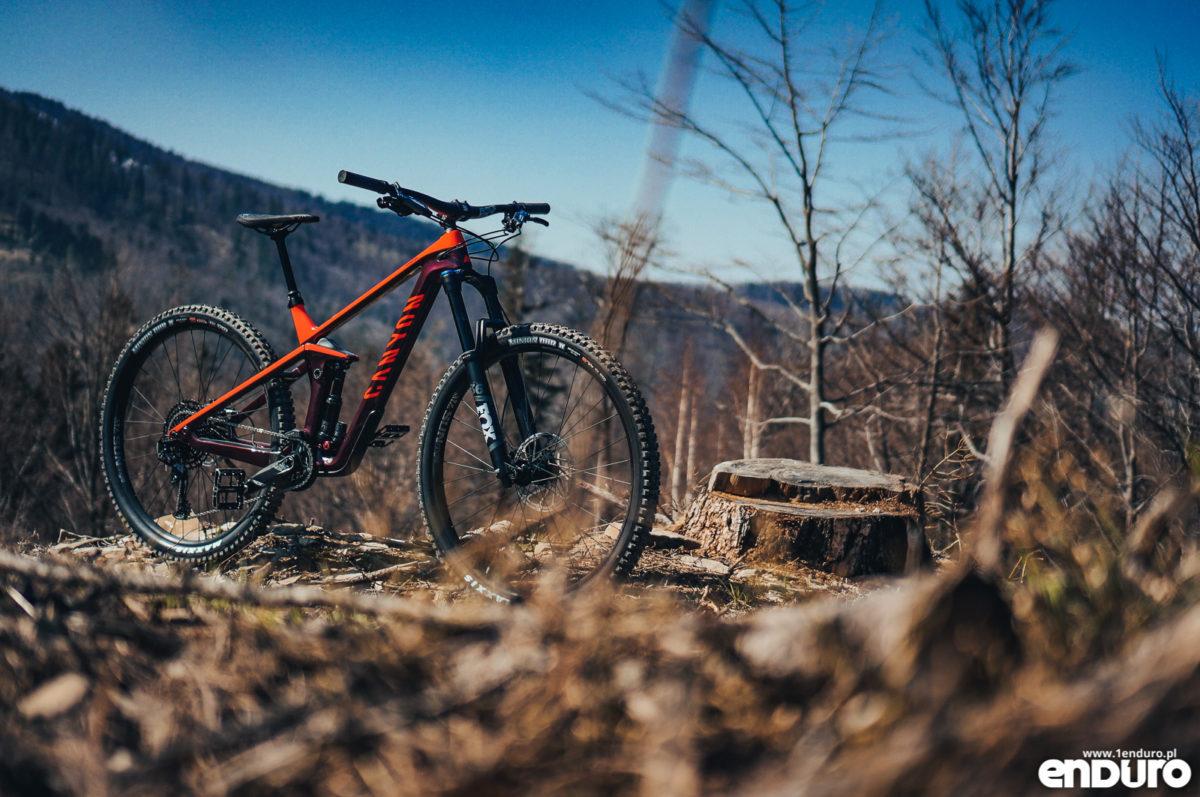 Test: Canyon Strive CF 5.0 2019